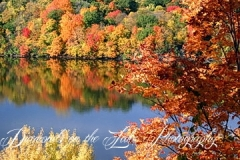 photographers-smith-mountain-lake-119